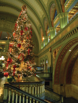 a christmas tree set up in union stations grand hall barbara gibbs ostmann photo